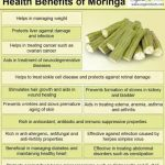 Moringa, the miracle plant